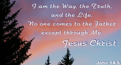 I am the way, the truth, and the life: no man comes unto the Father, but by me.   &nbsp Jesus Christ