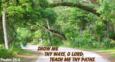 Show me Thy ways, O Lord; teach my Thy paths.